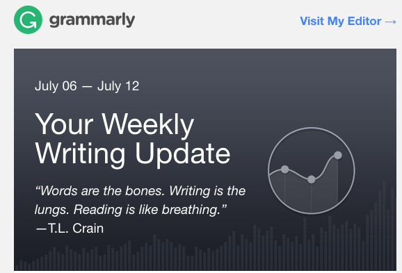 What is Grammarly? - Free grammar checker tool online! - Insight