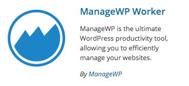 How To Backup WordPress Site? - ManageWP Worker