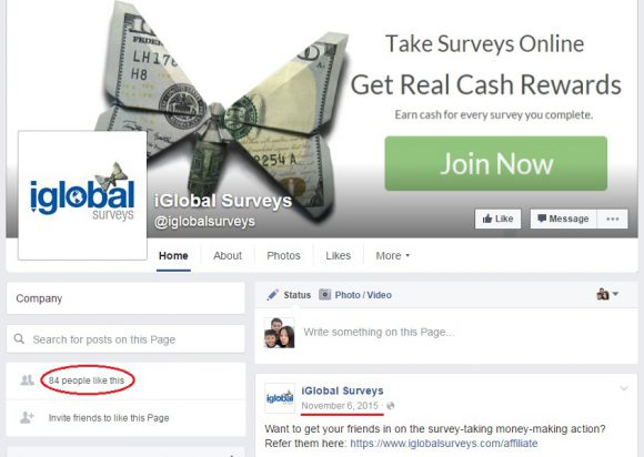 iGlobal Surveys Review - FB page