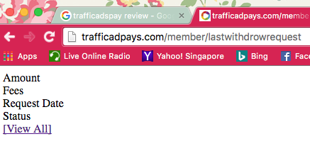 Traffic Ad Pays Review - bug 4.1
