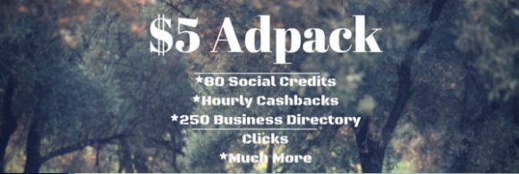 Traffic Ad Pays Review - Adpack 2
