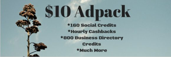 Traffic Ad Pays Review - Adpack 3